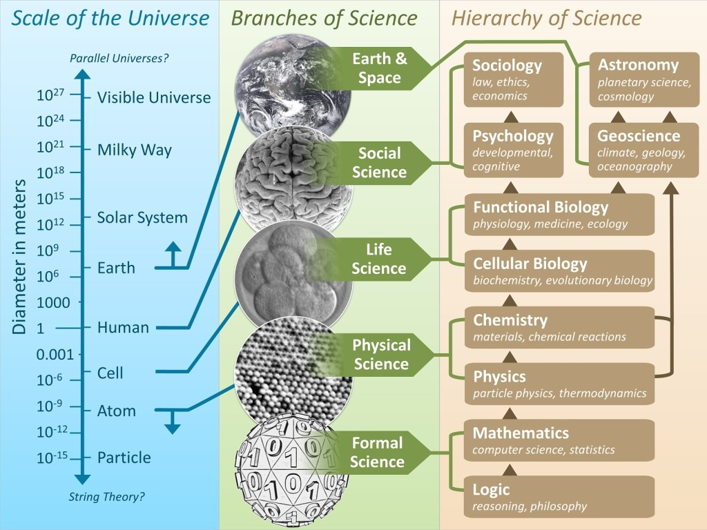The 'hierarchy' of sciences,